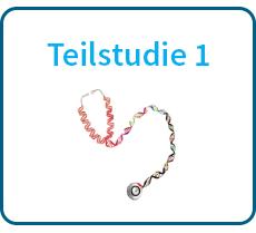 Teilstudie-1